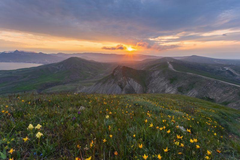 Киммерия веснойphoto preview