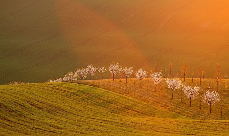 south moravia Heavenly light in a setphoto preview