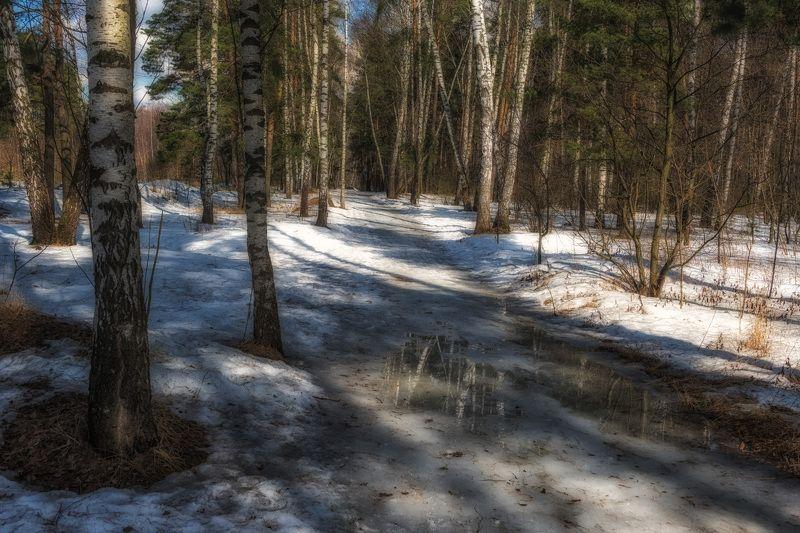 Последние дни зимыphoto preview