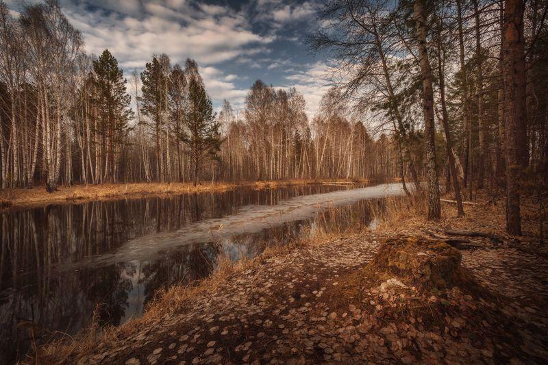 озеро, горы, лес, природа, закат, рассвет, красота, приключения, путешествие, облака Уж тает снег, бегут ручьи, В окно повеяло весною… Алексей Плещеевphoto preview