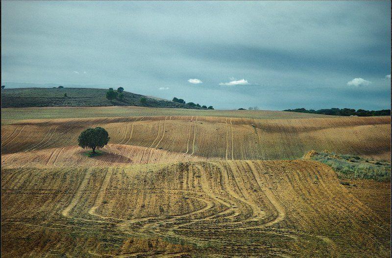 Испания осень Испания. Осень в поляхphoto preview