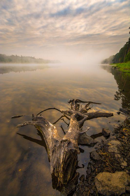 утро туман река лето облака Речная photo preview