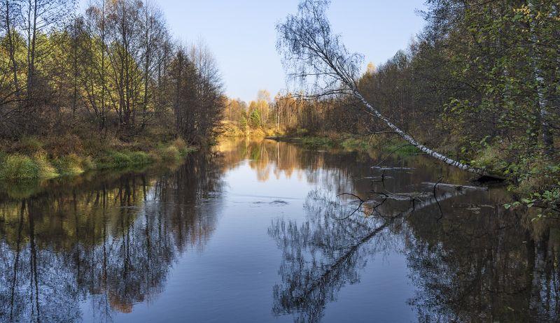 утро, берег реки, осень Река Линда.photo preview