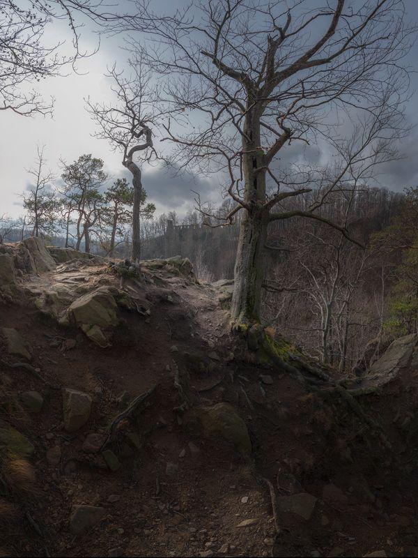 landscape,winter,canon,mountains,castle The Eternal Path фото превью