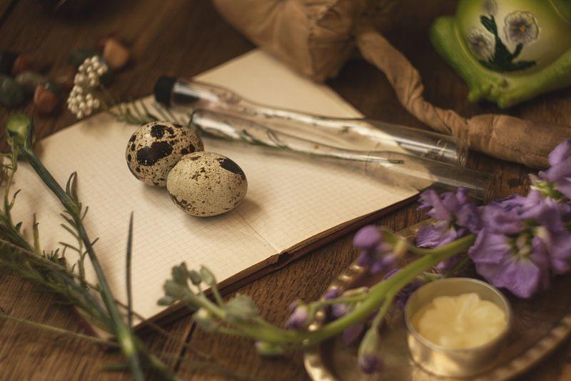 натюрморт, ботаника весеннее...photo preview