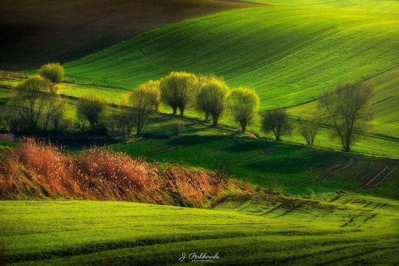 ponidzie, poland, spring Spring in Poland countrysidephoto preview