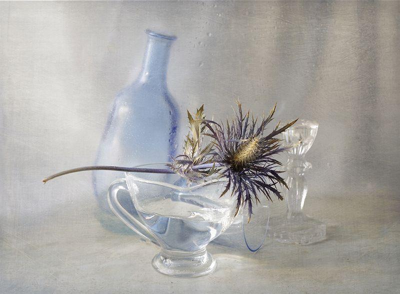сухоцветы ,натюрморт ,вера павлухина ,стекло , с синеголовникомphoto preview