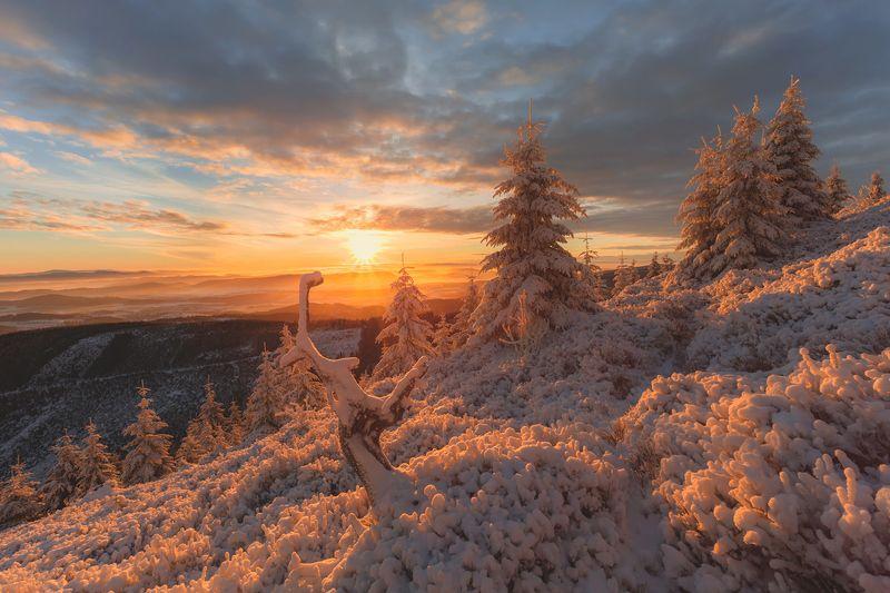 landscape,winter,canon,mountains Light for Better Days II фото превью