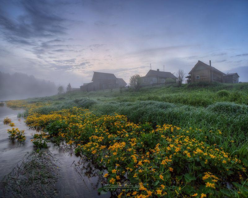 Летнее утро в деревне...photo preview