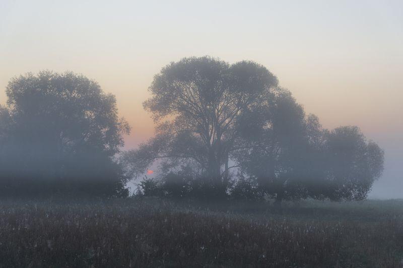рассветная Горинь...photo preview