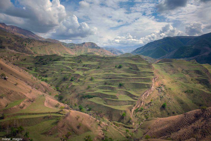 горы,весна,вершины,пейзаж,небо,деревья,дагестан,природа Весна в горах..photo preview