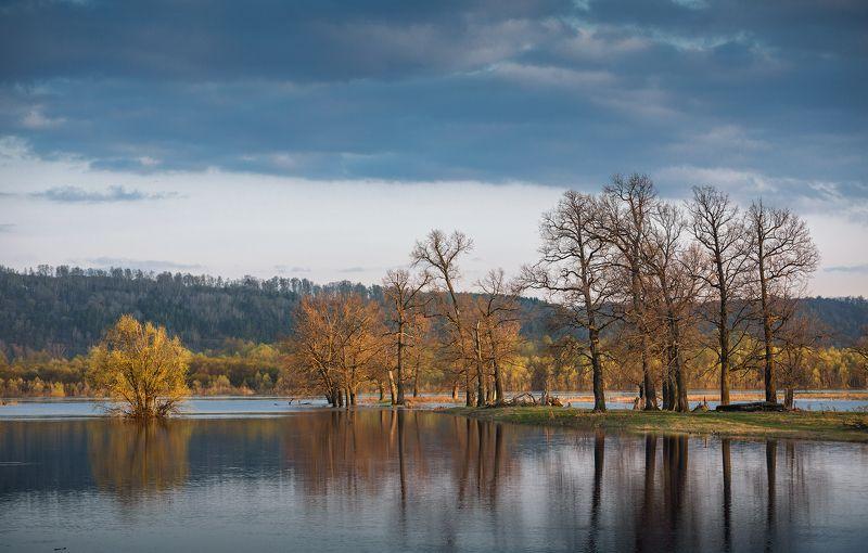 природа пейзаж вечер река деревья Весенний разливphoto preview