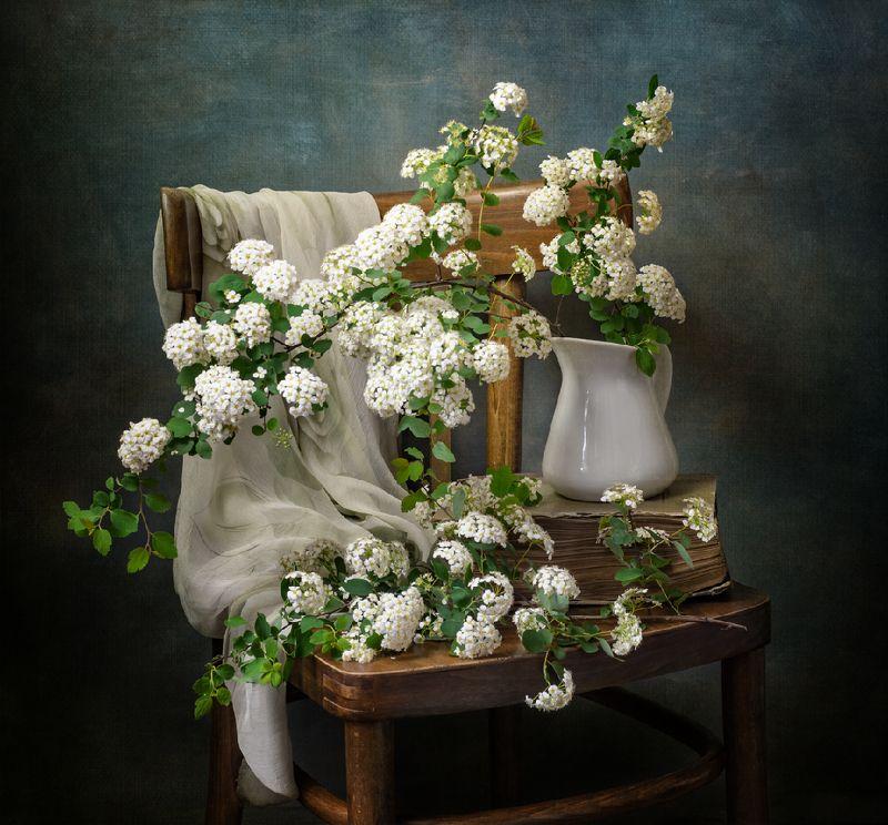 натюрморт, цветы, спирея Ароматы весныphoto preview