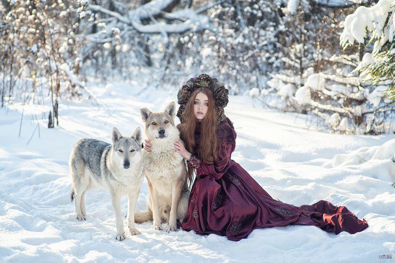 портрет, зима, красный, фентези, девушка, лес, сказка, холод, мороз, волки, животные Зимний лесphoto preview