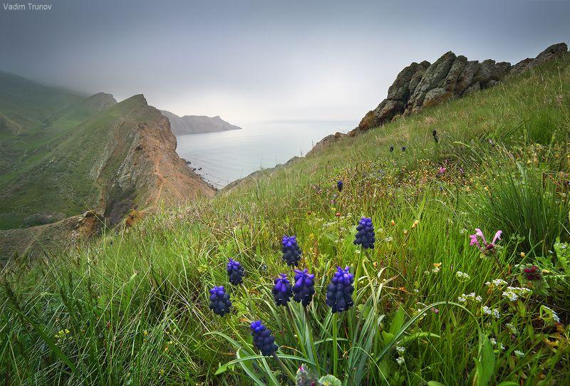 крым Крымская исландияphoto preview
