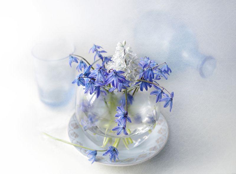 натюрморт ,цветы ,весна ,подснежники ,вера павлухина, С подснежникамиphoto preview
