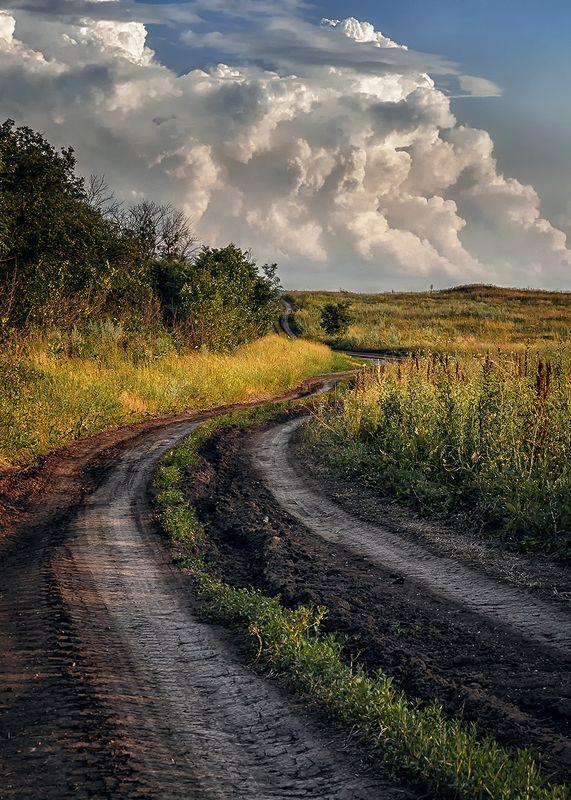 просёлочная дорога, дорога, облака, деревья, пейзаж Дорога в облакаphoto preview