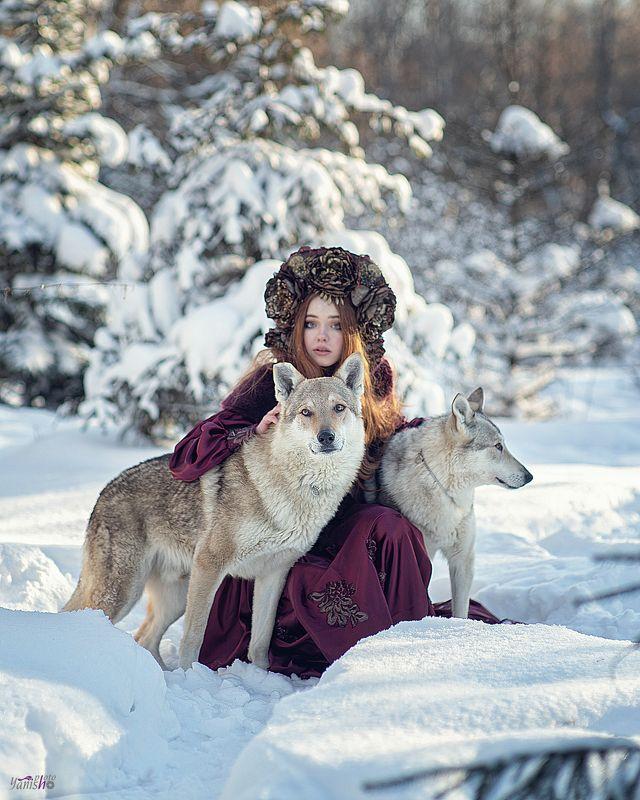 портрет, зима, красный, фентези, девушка, лес, сказка, холод, мороз, волки, животные Лесная нимфаphoto preview