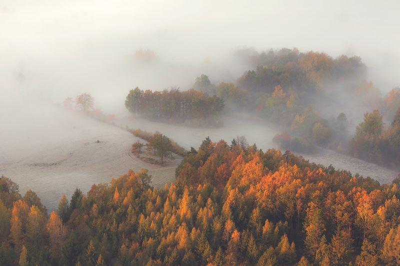 landscape,autumn,canon,mountains Portrait of Fall фото превью