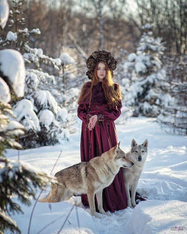 портрет, зима, красный, фентези, девушка, лес, сказка, холод, мороз, волки, животные photo preview