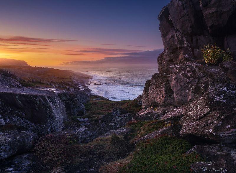 пейзаж, север, кольский, закат Мыс Скорбеевскийphoto preview