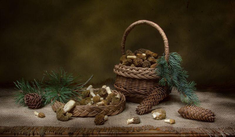 натюрморт, сторочки, ель, сосна, шишки Время строчков:)photo preview