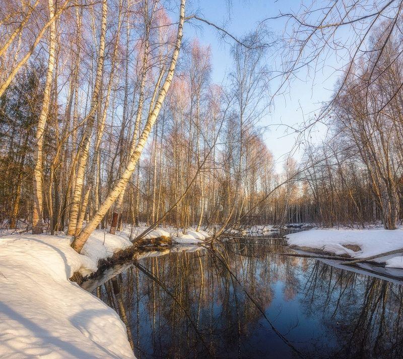 Апрель на лесной рекеphoto preview