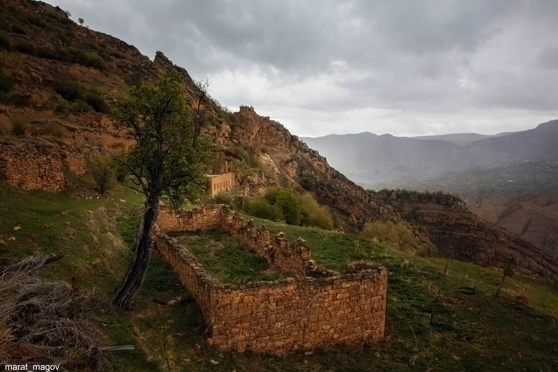 горы,аул,развалины,вершины,пейзаж,небо,деревья,дагестан,природа Старый аул Гамсутль..photo preview