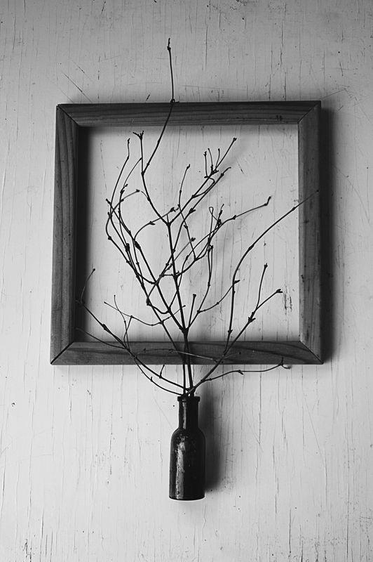натюрморт, минимализм эхо зимыphoto preview