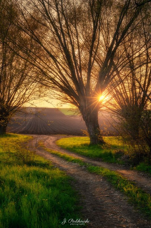 spring,countryside, sunset Countrysidephoto preview