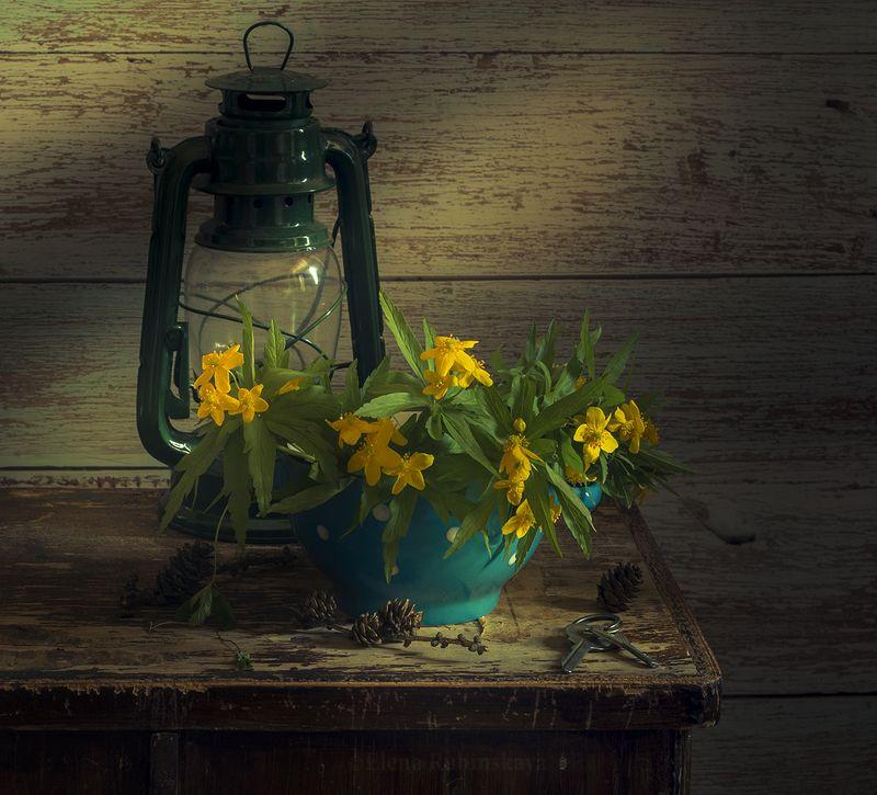 кострома,натюрморт photo preview
