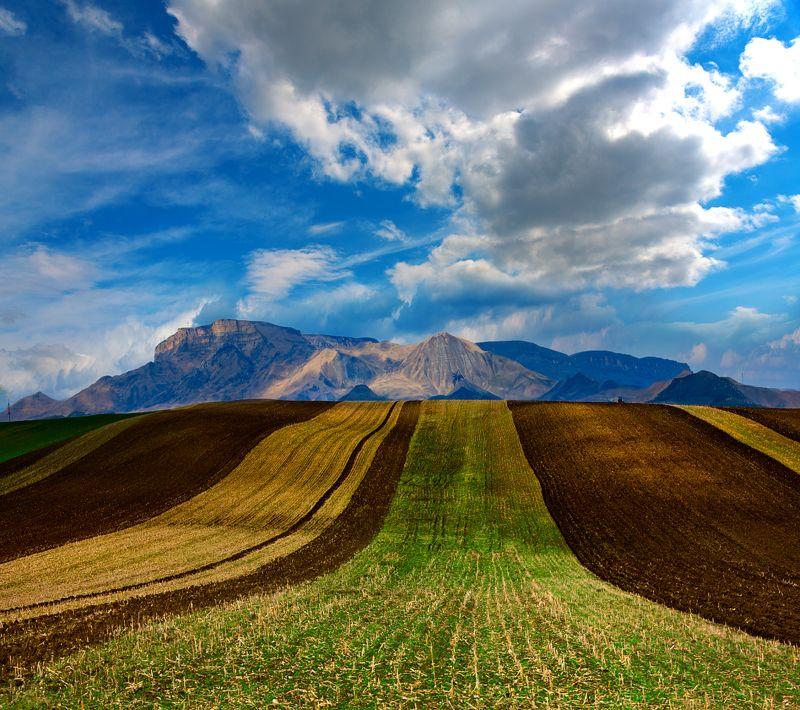 поле,весна,карачаево-черкессия,природа,пейзаж Весенная полосатость в горахphoto preview