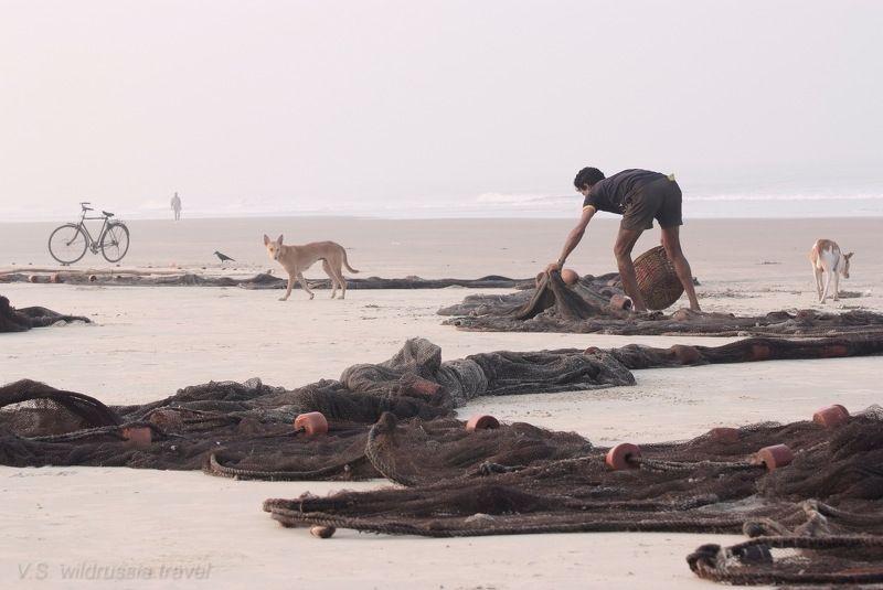 море, океан, берег, рыбак, сеть, собака, велосипед, индия, гоа, путешествие, приключение, шагнивнеизведанное Из цикла \