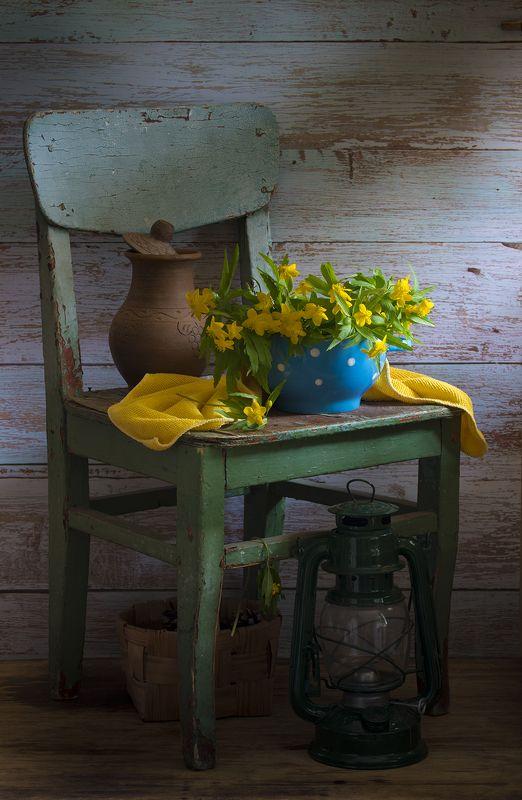 натюрмотр,кострома,весна photo preview