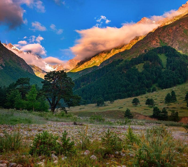 утро,чегем,облака,природа,пейзаж,кбар Утро в Чегемском ущельеphoto preview