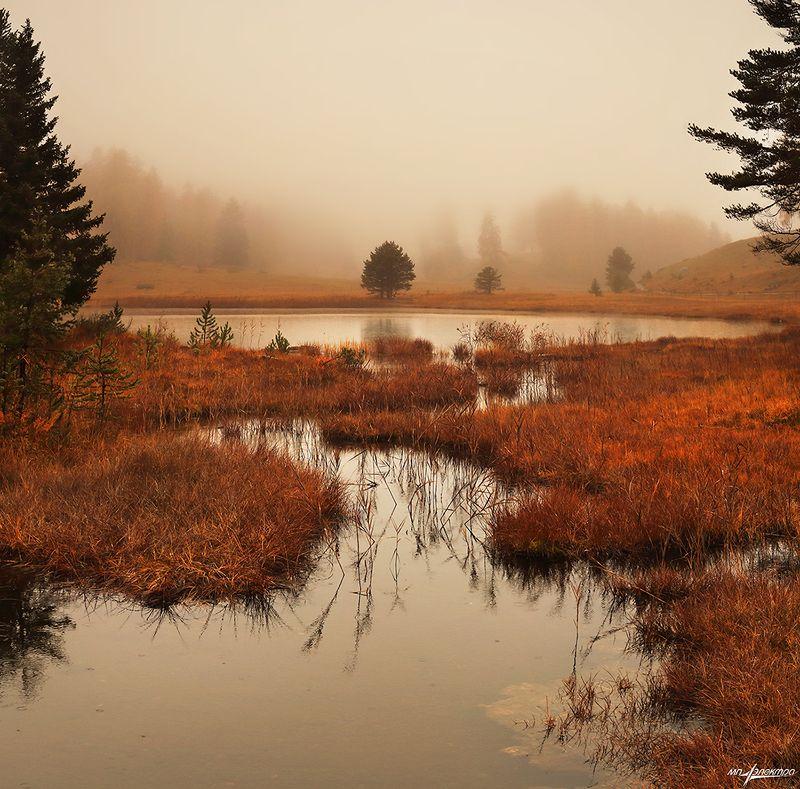swiss Осень.photo preview