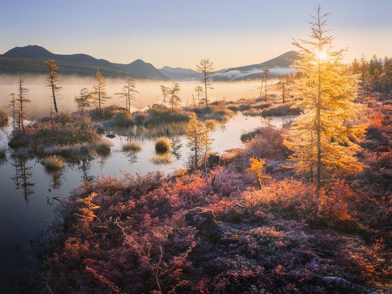 озеро, колыма, озероджекалондона Колористика осенней Колымыphoto preview