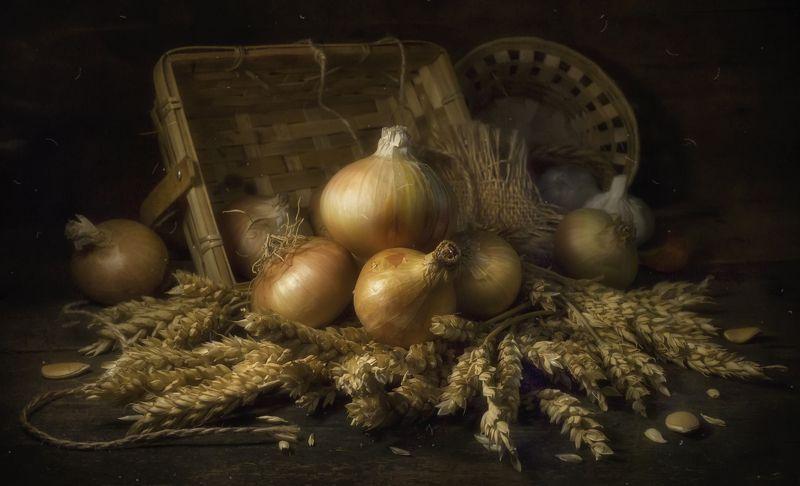 лук,золото,колосья,корзинки,тёплый,деревенский,домашний,овощи Золотистый лук !photo preview