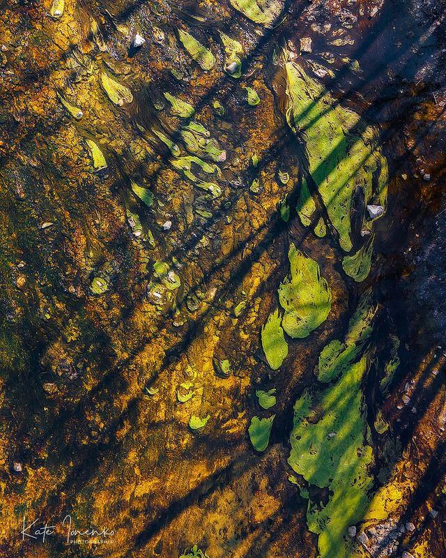Природа - лучший художник!photo preview