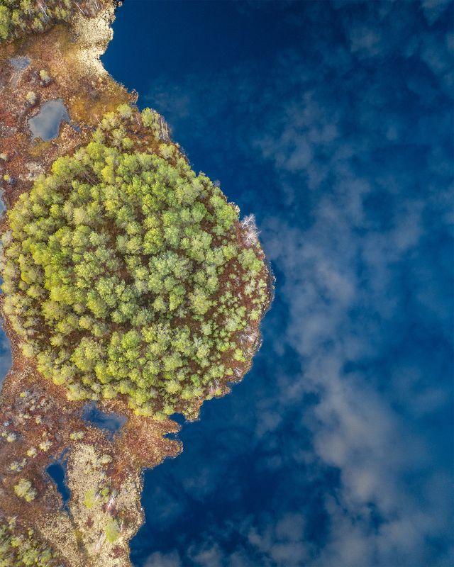 пермский край, весна, пейзаж, россия, урал, шабуничи, болото, озеро, отражение, небо Водное зеркалоphoto preview