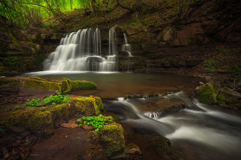 landscape nature scenery forest wood spring waterfall river riverside longexposure mountain balkan staraplanina bulgaria река лес весна The song of spring / Песня весныphoto preview