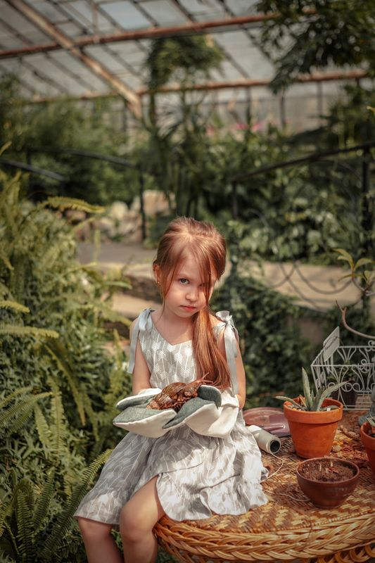 сад,садованики,оранжерея В оранжерееphoto preview