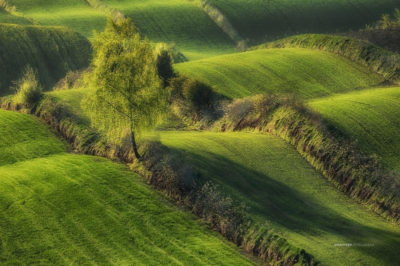 morning, light, shadow, landscape, fields, rpowroznik morning shadow...photo preview