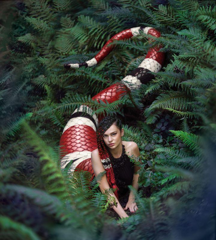 змея, ламия, фэнтези, королевская змея Ламияphoto preview