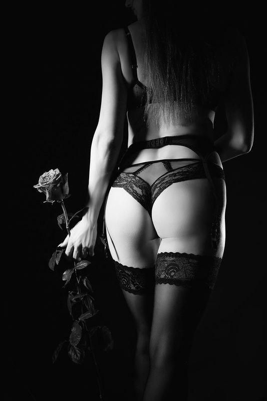 девушка, роза, белье, красивая девушка, b&w Девушка с розойphoto preview