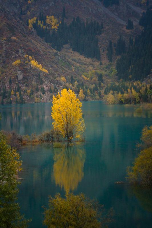 Горное озеро Иссыкphoto preview
