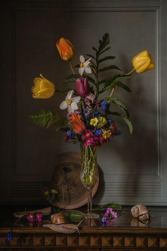 натюрморт, стекло, цветы, тюльпаны, нарциссы, мускари, улитки Бокал весныphoto preview