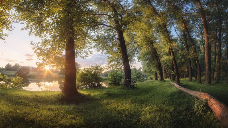 украина, коростышев, река тетерев, лето, июнь, тишина, гармония, безмолвие, детство, велосипед, жизнь, радость, Где нет времени, и прекрасен дождь...photo preview