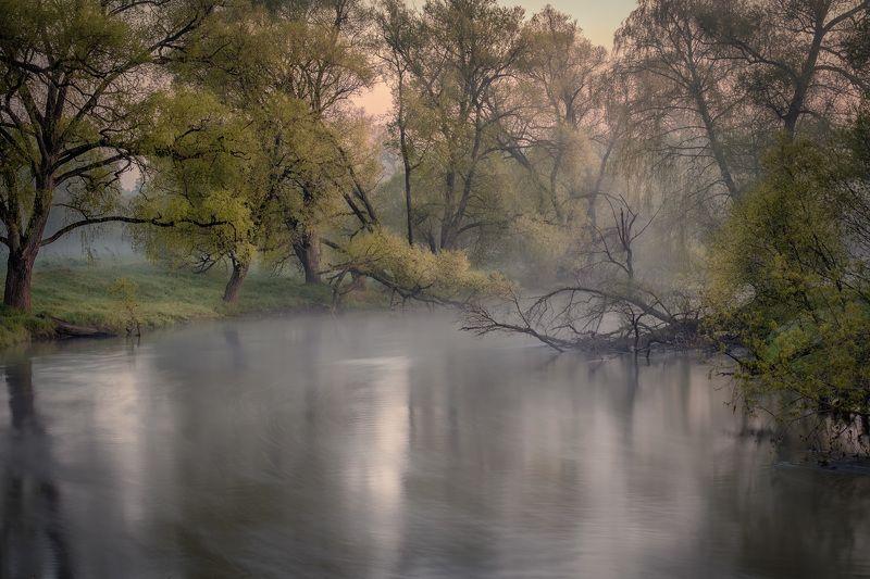 река, истра, утро, деревья, зелень, поток, рассвет, вода, пейзаж Хранители рекиphoto preview