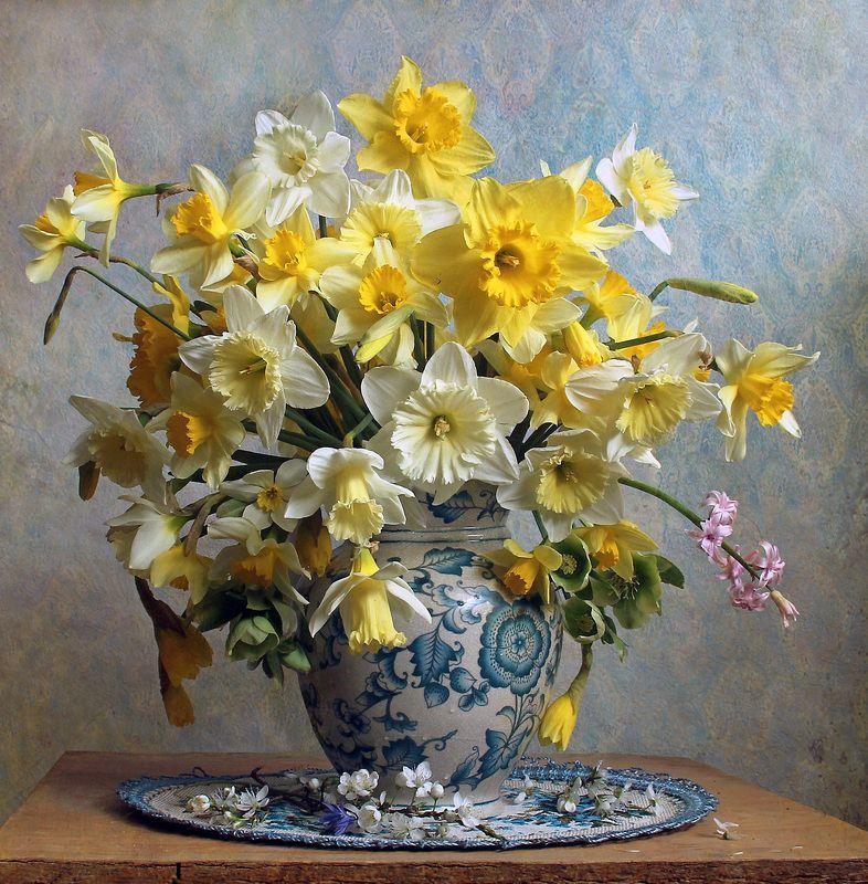 весна, натюрморт, букет цветов, нарциссы, марина филатова Нарциссов желтых солнечный букетphoto preview